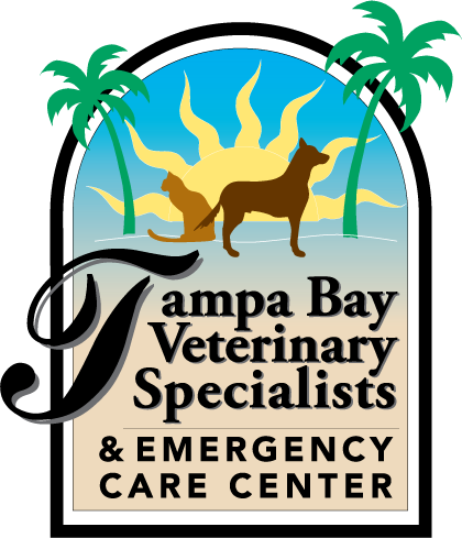 Tampa Bay Veterinary Specialists & Emergency Care Center